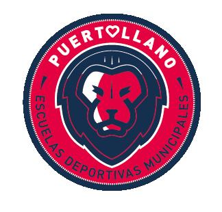 EDM FS PUERTOLLANO (Ciudad Real)                                4 equipos : Fútbol Sala: Cadete - 2 Infantiles - Alevín